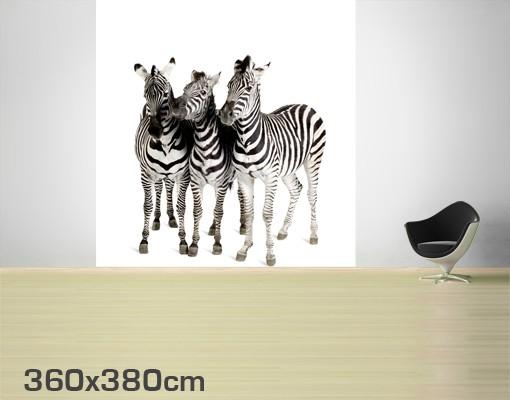 Produktfoto Selbstklebende Tapete - Fototapete Zebras