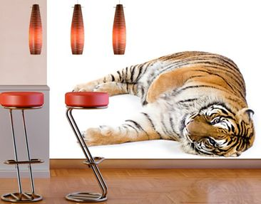 Produktfoto Photo Wall Mural Cuddle Tiger