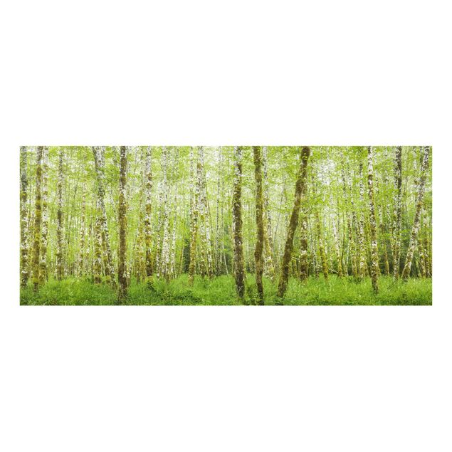 Produktfoto Glasbild - Hoh Rainforest Olympic National Park - Panorama