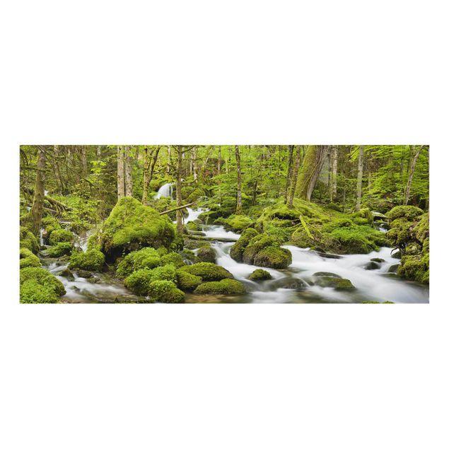 Produktfoto Glasbild - Moosbedeckte Steine Schweiz - Panorama