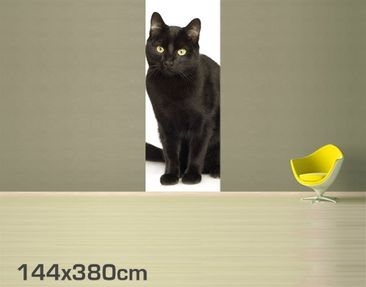 Product picture Photo Wall Mural Black Cat