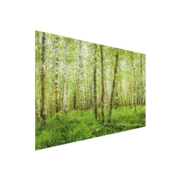 Produktfoto Glasbild - Hoh Rainforest Olympic National Park - Querformat 2:3