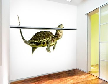 Produktfoto Photo Wall Mural Turtle II