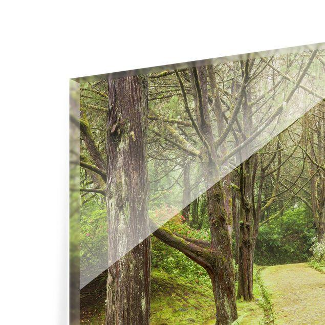 Produktfoto Spritzschutz Glas - Moosbewachsene Straße - Quadrat 1:1