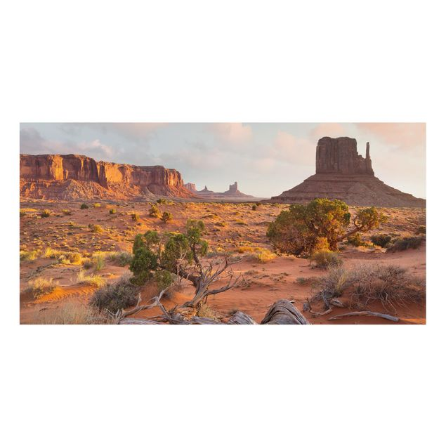 Produktfoto Spritzschutz Glas - Monument Valley Navajo Tribal Park Arizona - Querformat 1:2