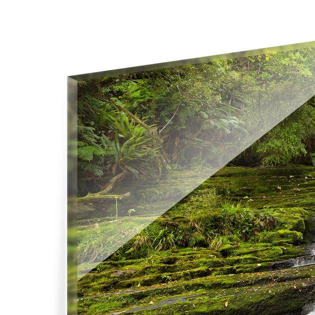 Produktfoto Spritzschutz Glas - Upper McLean Falls in Neuseeland - Querformat 1:2