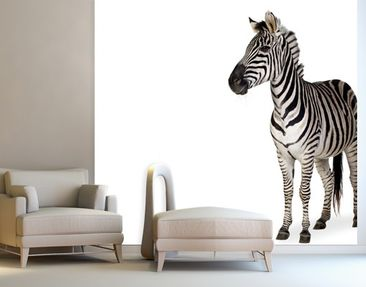 Produktfoto Photo Wall Mural Zebra I