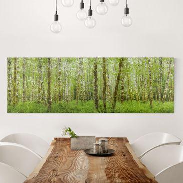 Produktfoto Leinwandbild - Hoh Rainforest Olympic National Park - Panorama 1:3