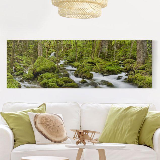 Produktfoto Leinwandbild - Moosbedeckte Steine Schweiz - Panorama 1:3