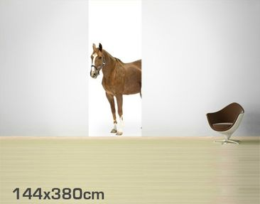 Product picture Photo Wall Mural Mare & Foal