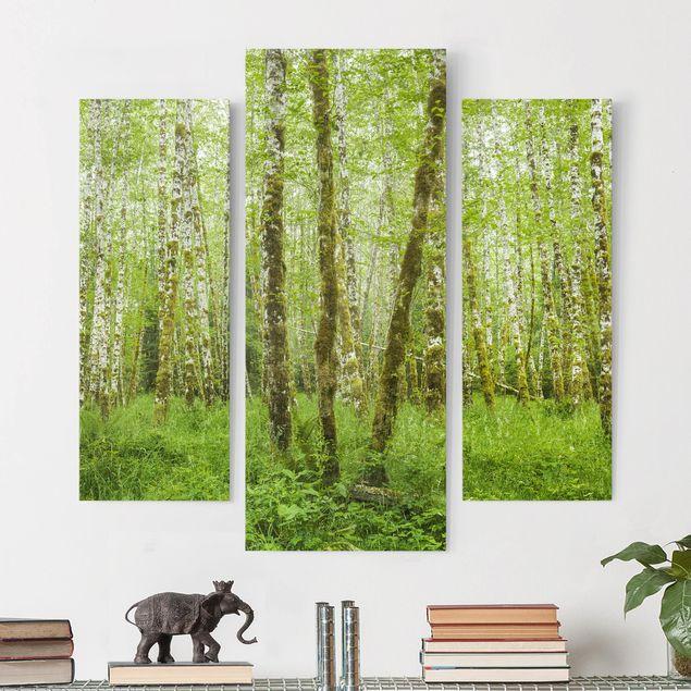 Produktfoto Leinwandbild 3-teilig - Hoh Rainforest Olympic National Park - Galerie Triptychon