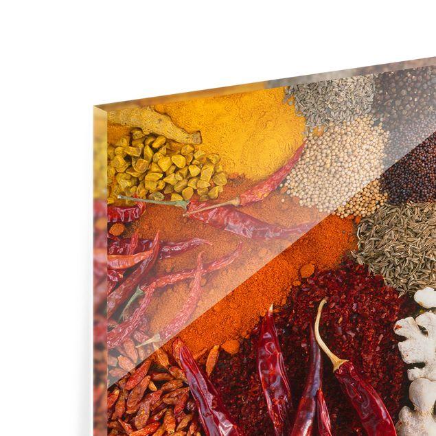 Produktfoto Spritzschutz Glas - Exotische Gewürze - Panorama