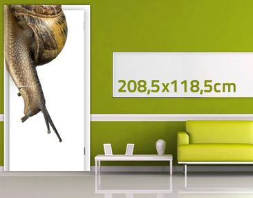 Product picture Door Wall Mural Racing Snail