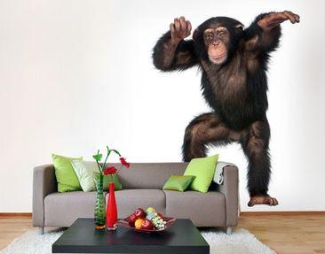 Produktfoto Photo Wall Mural Cheery Monkey