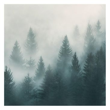 Product picture Non-woven wallpaper - Coniferous Forest...