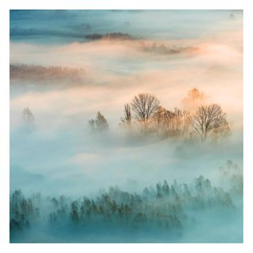 Product picture Non-woven wallpaper - Fog At Sunrise -...