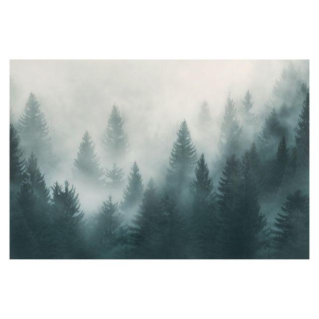 Produktfoto Vliestapete Premium - Nadelwald im Nebel - Fototapete Breit