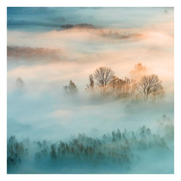 Immagine del prodotto Carta da parati Premium - Fog At Sunrise