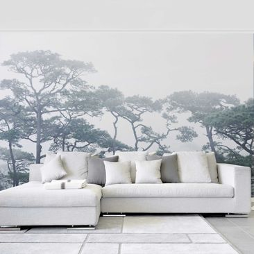 Product picture Photo Wall Mural - Treetops In Fog -...