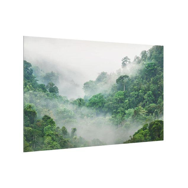 Produktfoto Spritzschutz Glas - Dschungel im Nebel - Querformat 2:3