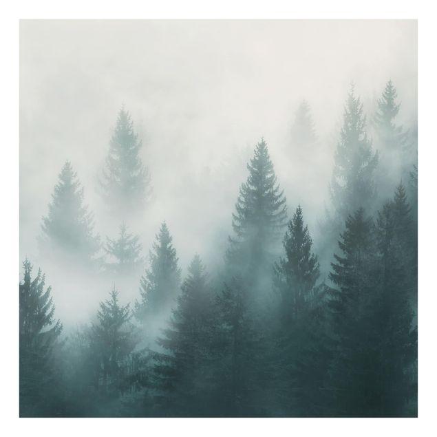 Produktfoto Spritzschutz Glas - Nadelwald im Nebel - Quadrat 1:1