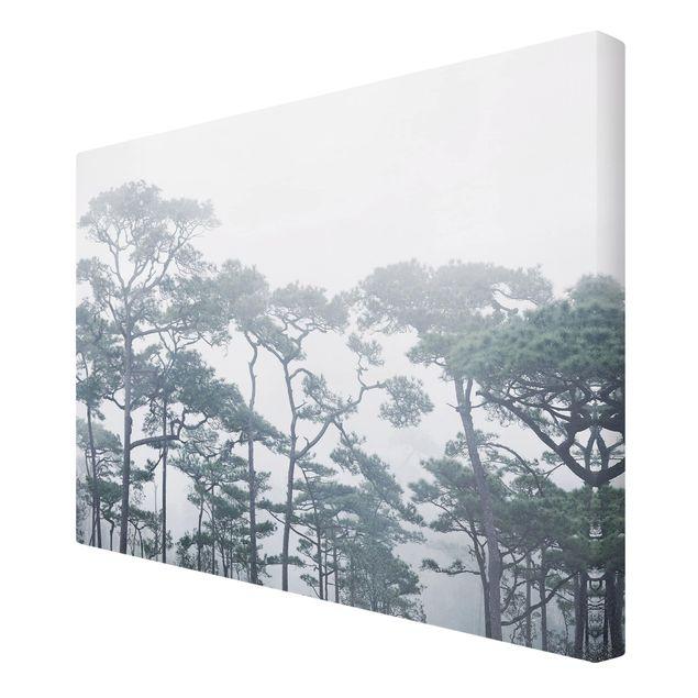 Immagine del prodotto Stampa su tela - Cime degli alberi nella nebbia - Orizzontale 2:3
