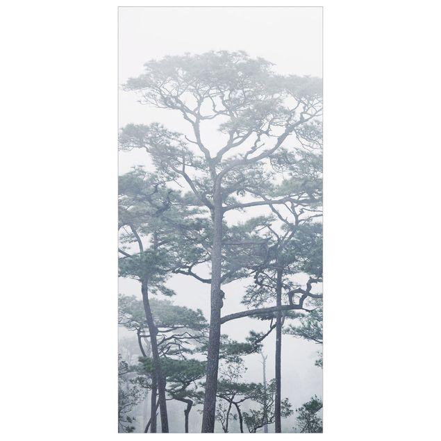 Immagine del prodotto Tenda a pannello - Treetops In Fog - 250x120cm