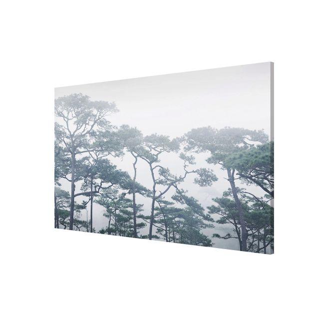 Produktfoto Magnettafel - Baumkronen im Nebel - Memoboard Querformat 2:3