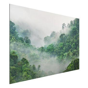 Product picture Aluminium Print - Jungle In The Fog -...