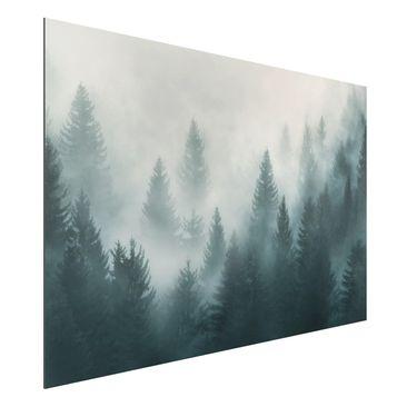 Produktfoto Aluminium Print - Nadelwald im Nebel - Querformat 2:3