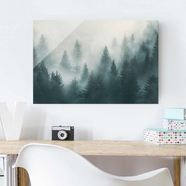 Product picture Print on Glass - Coniferous Forest In...