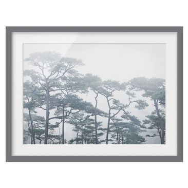 Product picture Framed print - Treetops In Fog -...