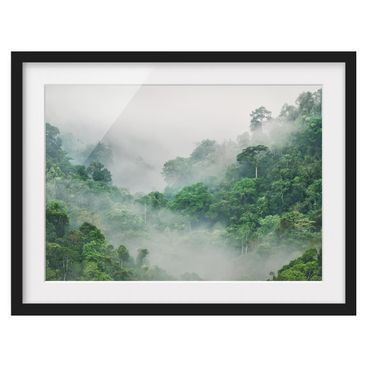 Product picture Framed print - Jungle In The Fog -...