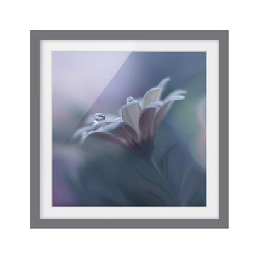 Product picture Framed print - Behind Closed Eyes -...