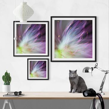 Product picture Framed print - Pollen - Square Format...