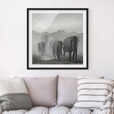 Product picture Framed print - Herd Of Elephants -...