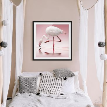 Product picture Framed print - Flamingo Dance - Square...