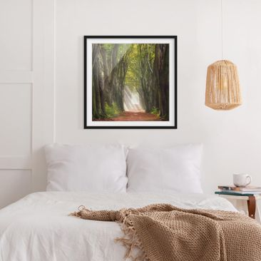 Product picture Framed print - Glorious Day In The...