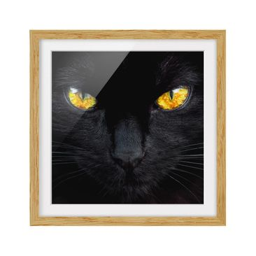 Product picture Framed print - Hypnotic Expression -...