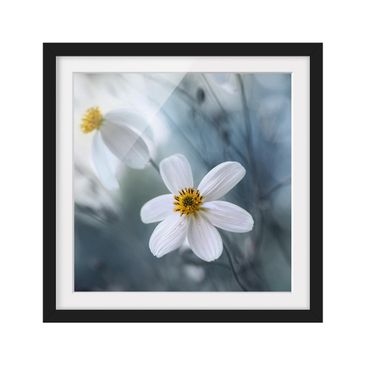 Product picture Framed print - Kosmeen In Pastel -...