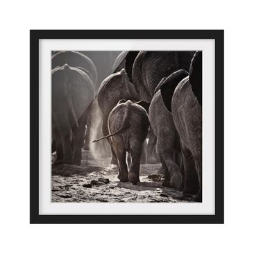 Product picture Framed print - Go Home - Square Format...