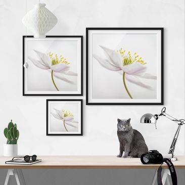 Product picture Framed print - Nemorosa - Square Format...
