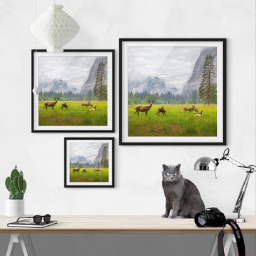 Product picture Framed print - Deer In The Mountains -...