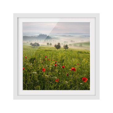 Product picture Framed print - Tuscany Spring - Square...