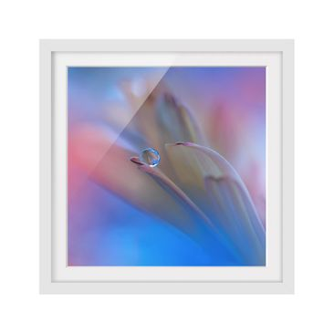 Product picture Framed print - Touch Me Softly - Square...