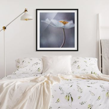 Product picture Framed print - White Anemones Blossom -...