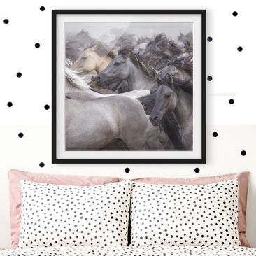 Product picture Framed print - Wild Horses - Square...