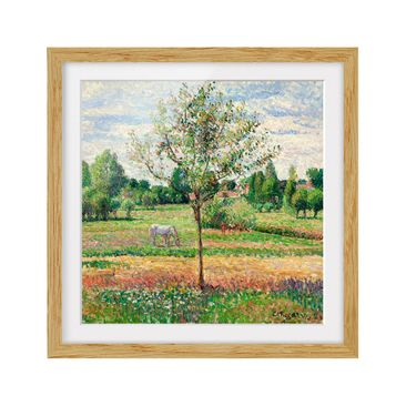 Product picture Framed print - Camille Pissarro - Meadow...