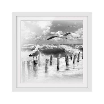 Product picture Framed print - No.Yk3 Absolute Sylt Ii -...