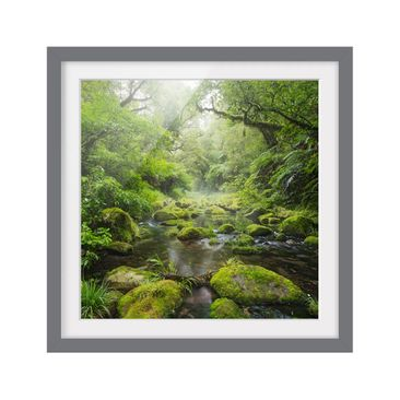 Product picture Framed print - Bay Of Plenty - Square...
